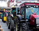 Strajk rolnik�w mo�e zaszkodzi�. Tak uwa�a... bran�a
