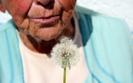 Kurkuma pomoże w leczeniu alzheimera?