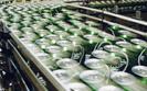 Carlsberg traci miliony i zwalnia pracownik�w