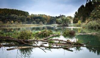 Światowy Dzień Wody w cieniu niebezpiecznej polityki rządu. Polskim rzekom grozi katastrofa ekologiczna