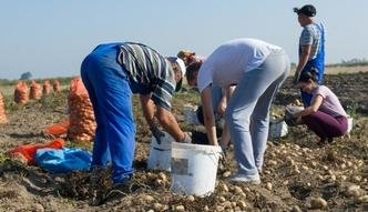 Płaca minimalna w Polsce wśród najniższych w Europie. Za to zarobki rosną szybciej