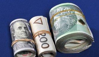Złoty w trójce najmocniejszych walut świata. Eksperci wątpią w trwałość tej tendencji