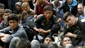 Polacy boj� si� imigrant�w spoza Unii, a oni ju� u nas s�. Sk�d pochodz� i co robi�?