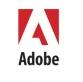 Adobe Flash Player 10.3.181.14