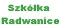 SZKӣKA DRZEW I KRZEW�W RADWANICE ADAM KALISZEWSKI
