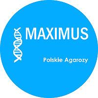 MAXIMUS ? POLSKIE AGAROZY