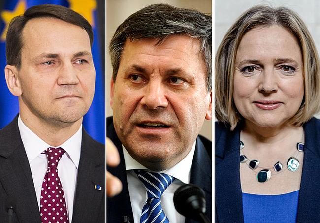 Radosław Sikorski, Janusz Piechociński i Wanda Nowicka - jedni z najbardziej oszczędnych posłów