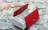 Dochodowy biznes w sieci. Poznaj 330 sposobów na zarabianie