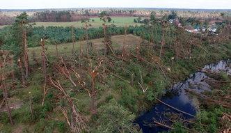 Liczenie strat po nawałnicach. Minister Jurgiel obiecuje odszkodowania za straty w produkcji rolnej