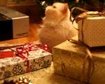 Świąteczne prezenty dla klientów nie zawsze stanowią koszt
