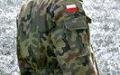 Lubawa ma umowę z polskim Inspektoratem Uzbrojenia. Akcje spółki mocno w górę