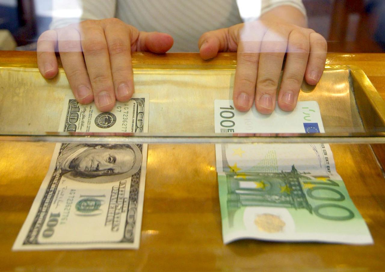 forex notowania gpw money tree