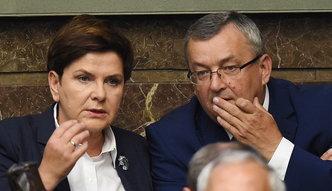 Nie będzie wycinki na terenach Lasów Państwowych. Ministerstwo odpowiada na publikację money.pl