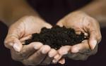 Opracowywanie strategii gospodarowania glebą dla każdego zakątka Europy