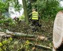 Wiadomości: Po huraganach polisy majątkowe podrożeją. Przedsiębiorcy mogą je odczuć w momencie odnawiania umów