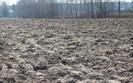 Polska narzeka na spekulantów w handlu ziemią. Niemcy nas popierają