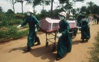 W Afryce Zachodniej malaria zabija więcej ludzi niż ebola