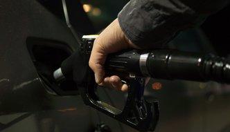Ceny paliw w górę. Najwyższe ceny na stacjach przy autostradach