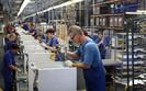 Amica przejęła dużego dystrybutora AGD we Francji. Plany 5 mld zł przychodów za pięć lat