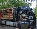 Wiadomości: Wiadomo już, kto kupuje drewno z wycinki w Puszczy Białowieskiej. Lista liczy 128 firm