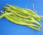 Sadzenie fasoli szparagowej