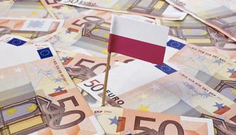 Euro poniżej 4,25 zł. Złoty najmocniejszy od roku