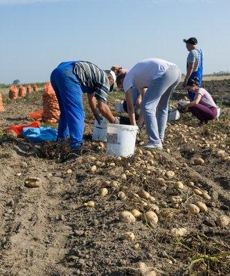 Ukrainiec już nie taki tani. Coraz większy problem na rynku pracy